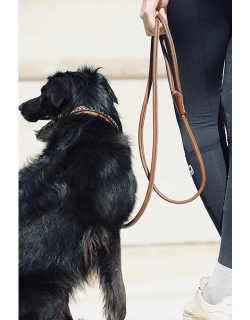 Pénélope Leather dog leash