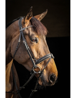 Luxe Bridle - Black & grey